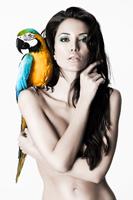 Motive des für Volkswagen Leasing umgesetzten Pin Up Kalenders. Beauty und Fashion Fotograf Michael Miklas setzte schöne Frauen mit wilden Tieren in seinem Fotostudio bei Hannover in Szene. Pin up Fotografie auf höchstem Niveau.